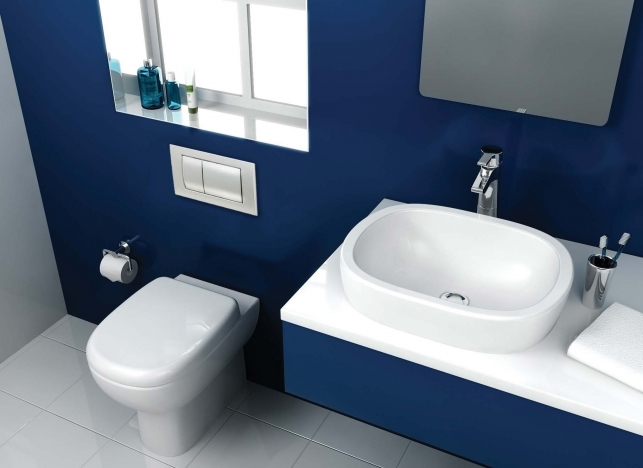 colour bathroom navy 3