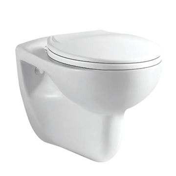 Picture of Capri Wall Hung toilet with toilet seat
